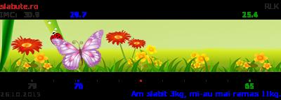 Ticker slabit ralucapopescu00
