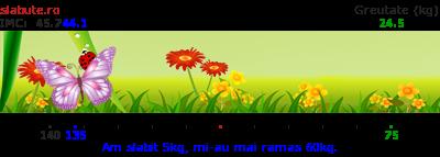 Ticker slabit pentru RAMONIK7816