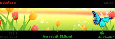 Ticker secundar slabit pentru flori55